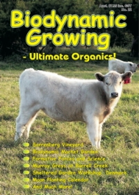 Biodynamic Growing Magazine issue number 22